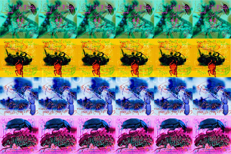 Artwork: Bug Images by Eleanor Gates-Stuart