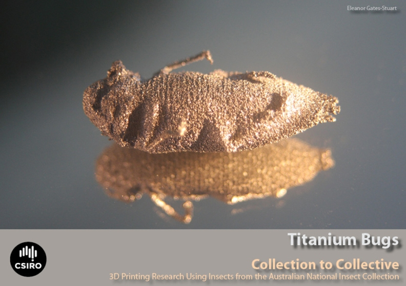 Titanium Bugs, 3D Printing Research - Eleanor Gates-Stuart in Collaboration with Chuong Nguyen
