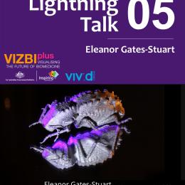 Vizbi @ Vivid Poster 2013