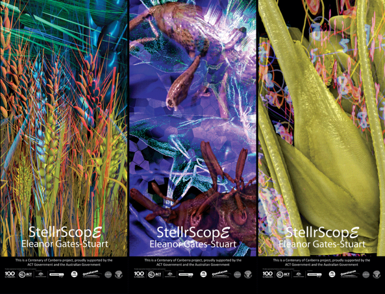 StellrScope Exhibition Banners: 'Oasis', 'Weevil', & 'WheatEar' by Eleanor Gates-Stuart