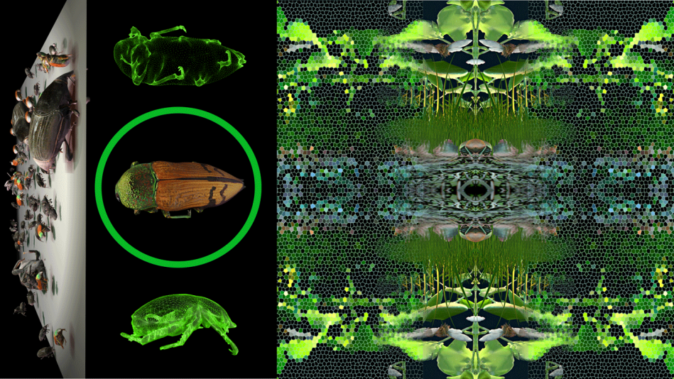 Image: 3D construction of insects: 3D models, animation and repeat design.