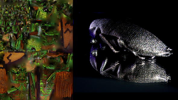 Image: 3D Insect model texture and 3D printed titanium insect