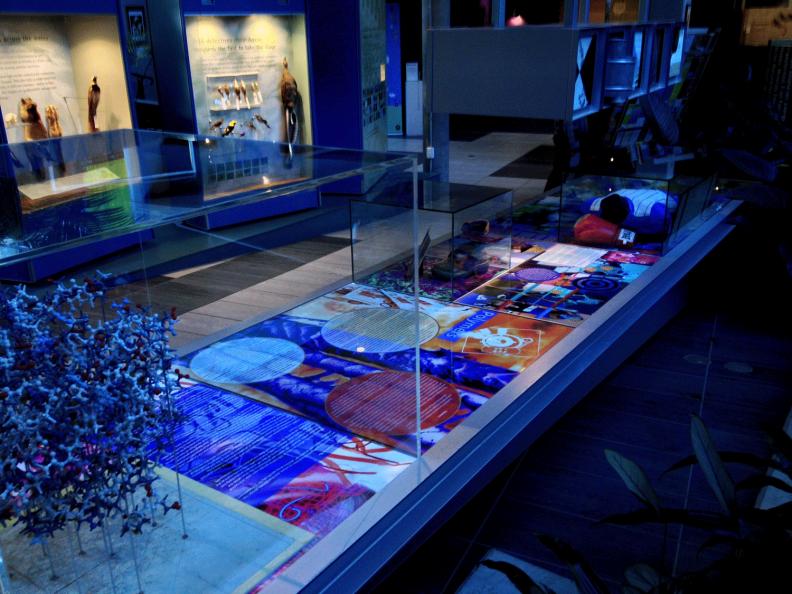 CSIRO Display - Images by Eleanor Gates-Stuart