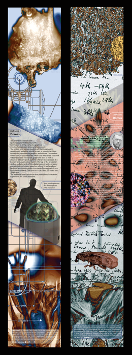 Information Panels for CSIRO Discovery Centre by Eleanor Gates-Stuart. Each panel is H: 271cm x W: 42.2 cm