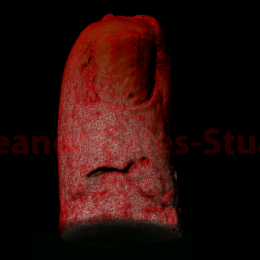 Reconstructed Finger by Eleanor Gates-Stuart